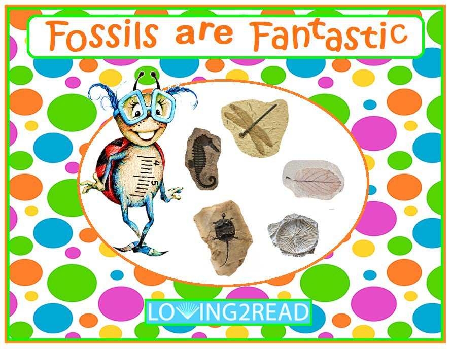 Fossils are Fantastic