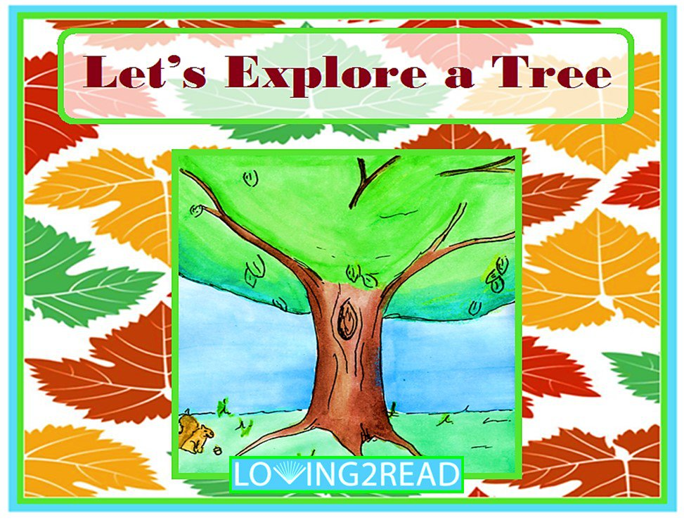 Let's Explore a Tree