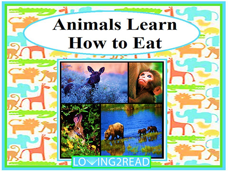 Animals Learn How to Eat