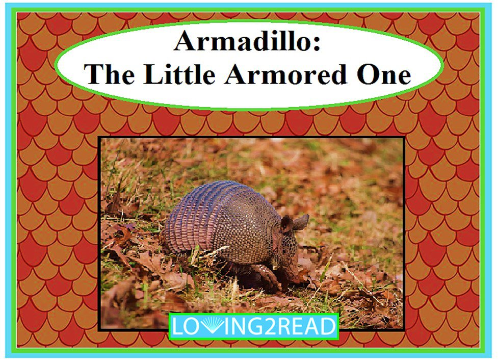 Armadillo: The Little Armored One