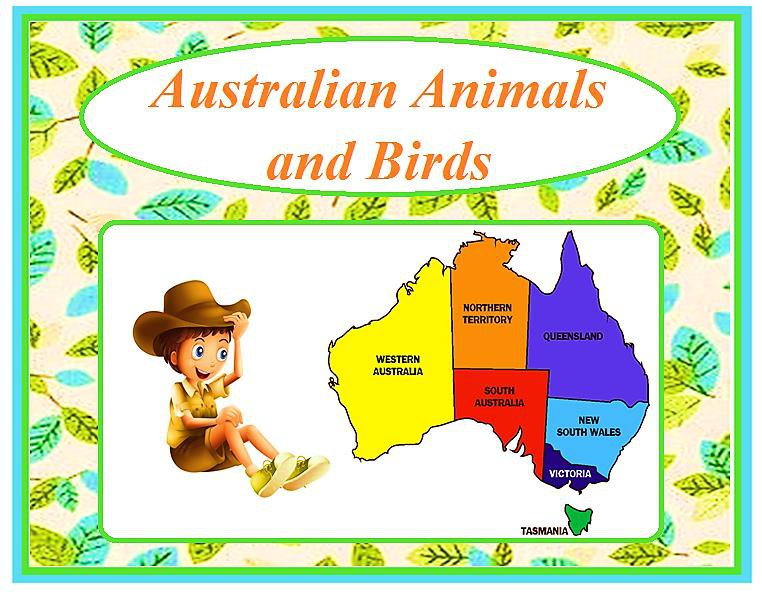Australian Animals and Birds