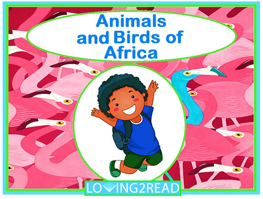 Animals and Birds of Africa