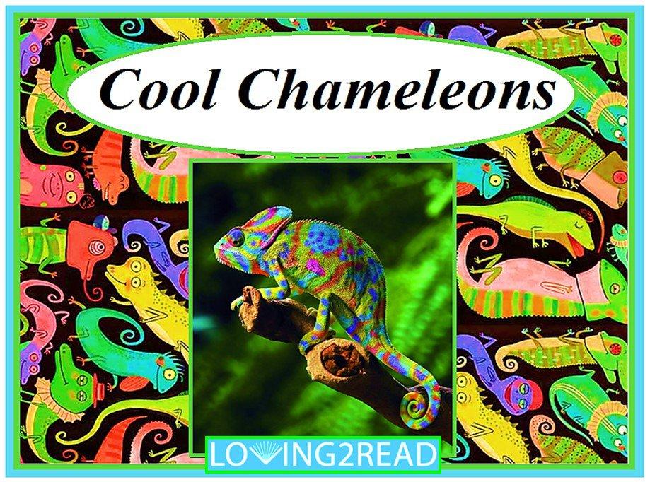 Cool Chameleons