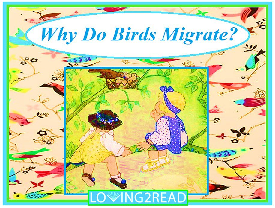 Why Do Birds Migrate?
