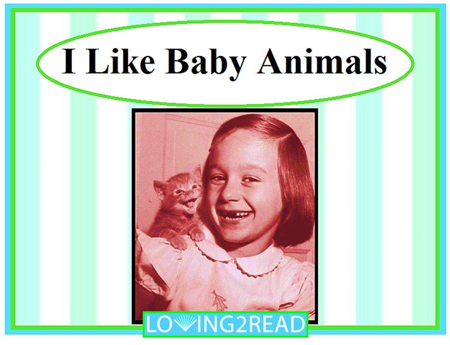 I Like Baby Animals