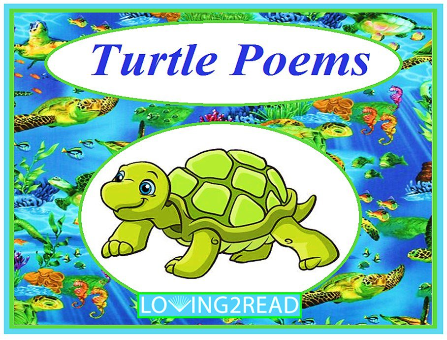 Turtle Poems