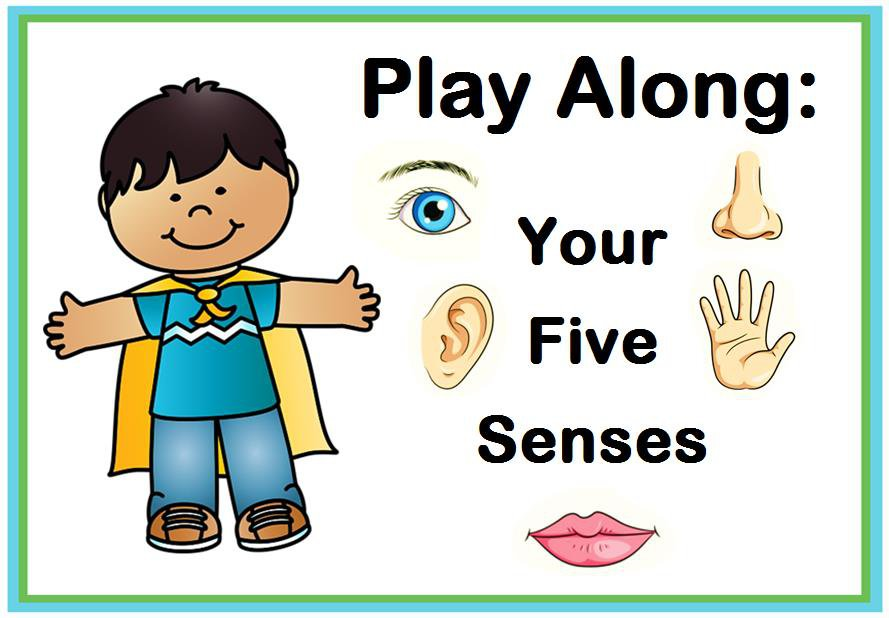 Play Along: Your Five Senses