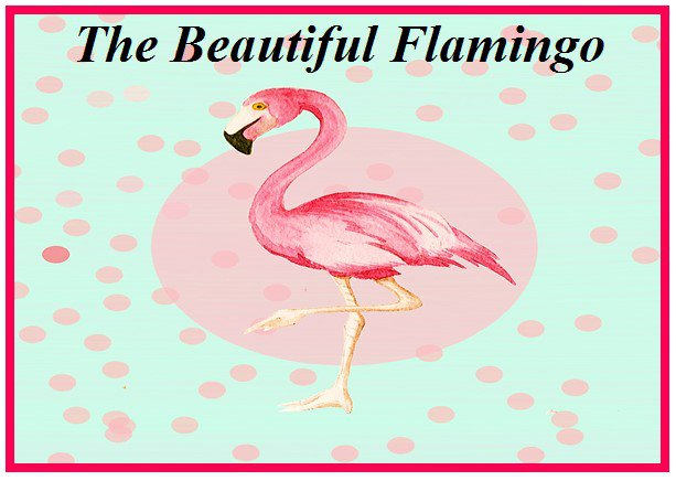 The Beautiful Flamingo