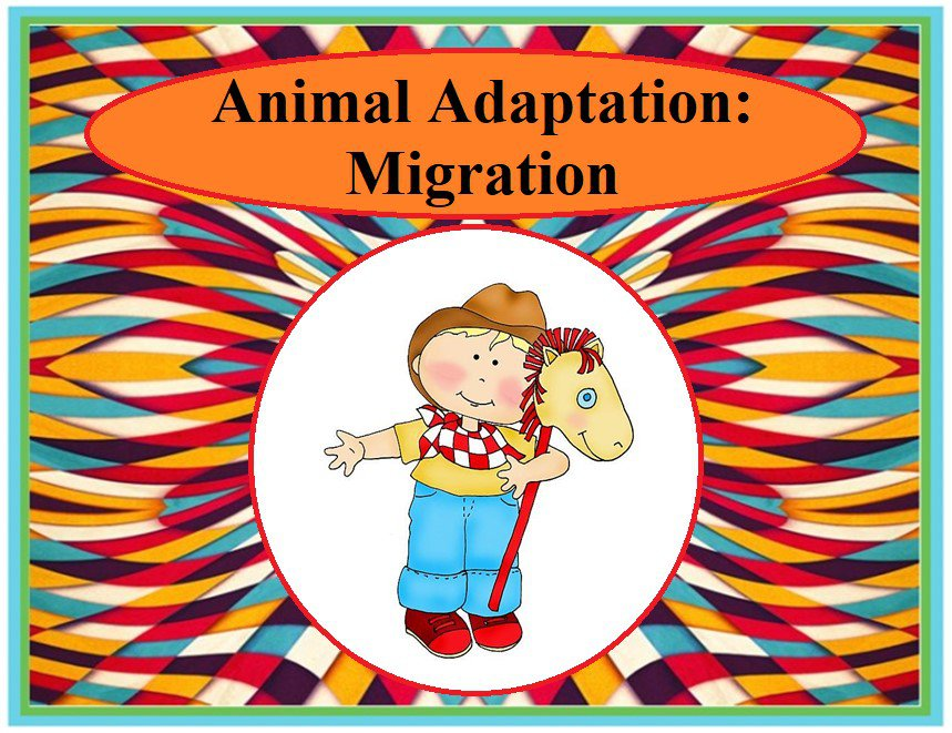 Animal Adaptions: Migration
